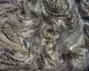 CD17 – Miscellanea
