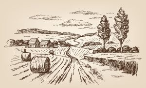 vector hand drawn village houses sketch and nature