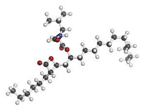 Orlistat obesity drug, chemical structure. Atoms are represented as spheres with conventional color coding: hydrogen (white), carbon (grey), nitrogen (blue), oxygen (red).